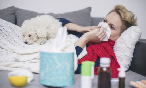 Q fever : Symptoms and Management